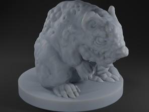Diseased Giant Rat