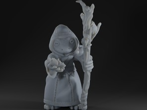 Druid shaman grung frog