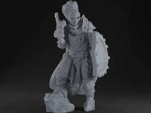 Fantasy Medieval Knight with Shield