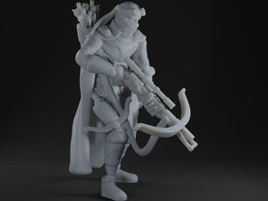 Human Ranger