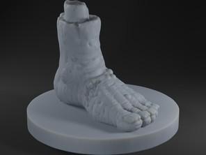 Stomping Foot